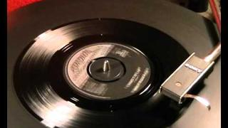 Bobby Fuller Four - I Fought The Law - 1966 45rpm
