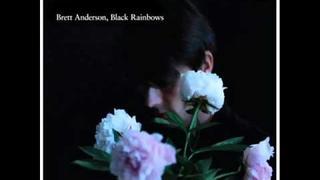 Brett Anderson Black Rainbows Album Sampler