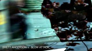BRETT ANDERSON · Hymn (2009)