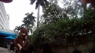 Chibipa Sampler III Fanvideo 1-2