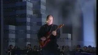 Christopher Cross - Best That You Can Do (Arthur's Theme) [TV-LIVE]