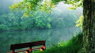 Čistá řeka