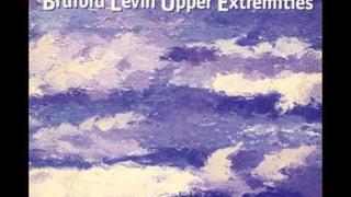 Cracking The Midnight Glass-Bruford Levin Upper Extremities(1998)-Bruford Levin Upper Extremities