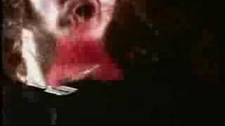 Damage Plan - Dimebag Darrell Tribute 2