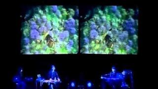 David Sylvian - Blemish (complete)
