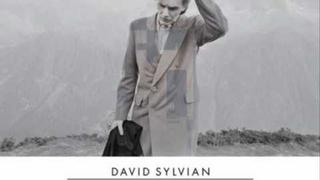 David Sylvian - Where's Your Gravity