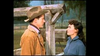DONNA REED: WESTERN BEAUTY