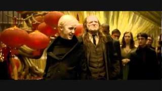 Draco & Hermione // Wizard Love