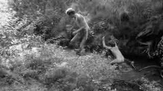 Ecce Homo Homolka - Uplna Labut