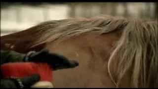 Eicca se svým koněm