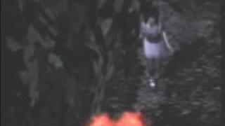 Fatal frame 2 - Lamentation [Based on the butterfly ending]