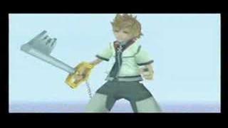 Fate - Kingdom Hearts II; AkuRoku