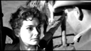 Greenhorns - Dlouhý černý závoj