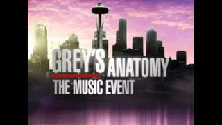 Grey's Anatomy Music Event - The Story
