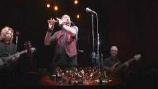 Ian Anderson Orchestral Calliandra Shade 02/20