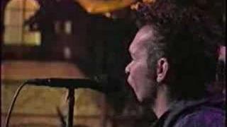 """John Mellencamp """"Key West Intermezzo live"""