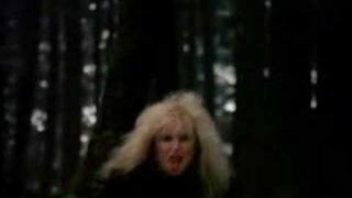 Lita Ford ~~ Out For Blood