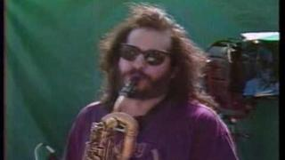 "Los Lobos/Grateful Dead ""This Land is Your Land"" 07-02-1989"