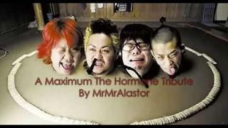 Maximum The Hormone - Tribute