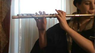 Me Playing My Shiny Teeth and Me by Chip Skylark (Chris Kirkpatrick) on Flute