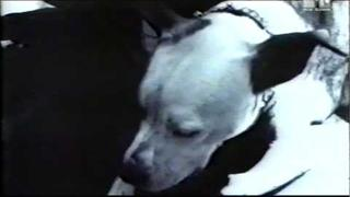 Michael Kiske - Always [HD]