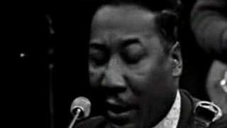 Muddy Waters & James Cotton - You Can't Loose What...
