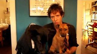 OK Go Announces new label