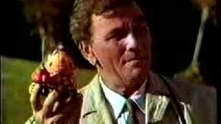 Peter Falk - Reklama na Toyotu