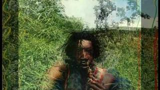Peter Tosh - Shame and Scandal