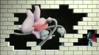 Pink Floyd - Behind The Wall Clip 1