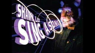 Shawn Lee ft. Princess Superstar - Christopher Walken walking on sunshine