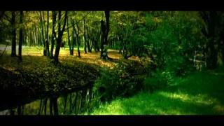 Sinan Kurtulus - This Love (Housefly Vol. 2)