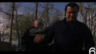 Steven Seagal vs. Testicles
