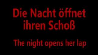 Stirb Nicht Vor Mir (Don't Die Before I Do) - Rammstein Lyrics and English Translation