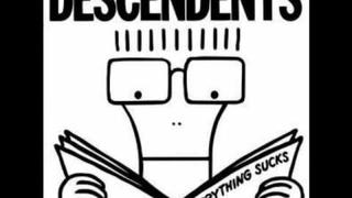 The Descendents- I'm The One
