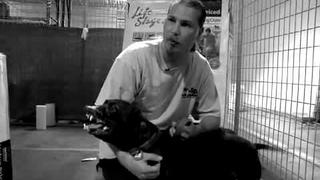 The Face of Dog Fighting- Tim & Fay
