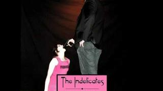 the indelicates - we hate the kids