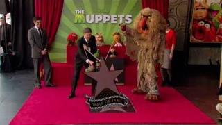 The Muppets - Hollywood Walk of Fame Star Ceremony