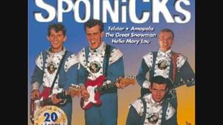 The Spotnicks - Greensleeves