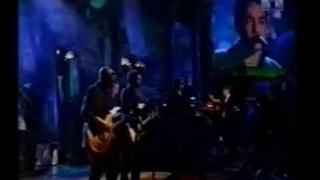 The Wallflowers - Heroes - Live 1998