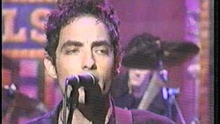"The Wallflowers live 1996 ""6th Avenue Heartache"""