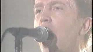 Tom Robinson - Grey Cortina