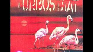 Turbostaat - Flamingo - 06 - 18.09 Uhr Mist verlaufen