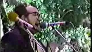 Veronica - Elvis Costello