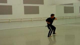 Vietnamese Kung Fu Snake Form - Dark Lotus Combat Arts