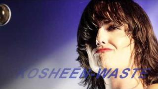 Waste (KosheenDjs Remix)2011